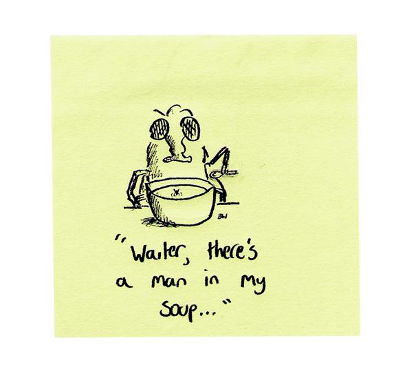 Fly Soup
